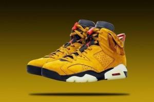 Nike Air Jordan 6 Cactus Jack